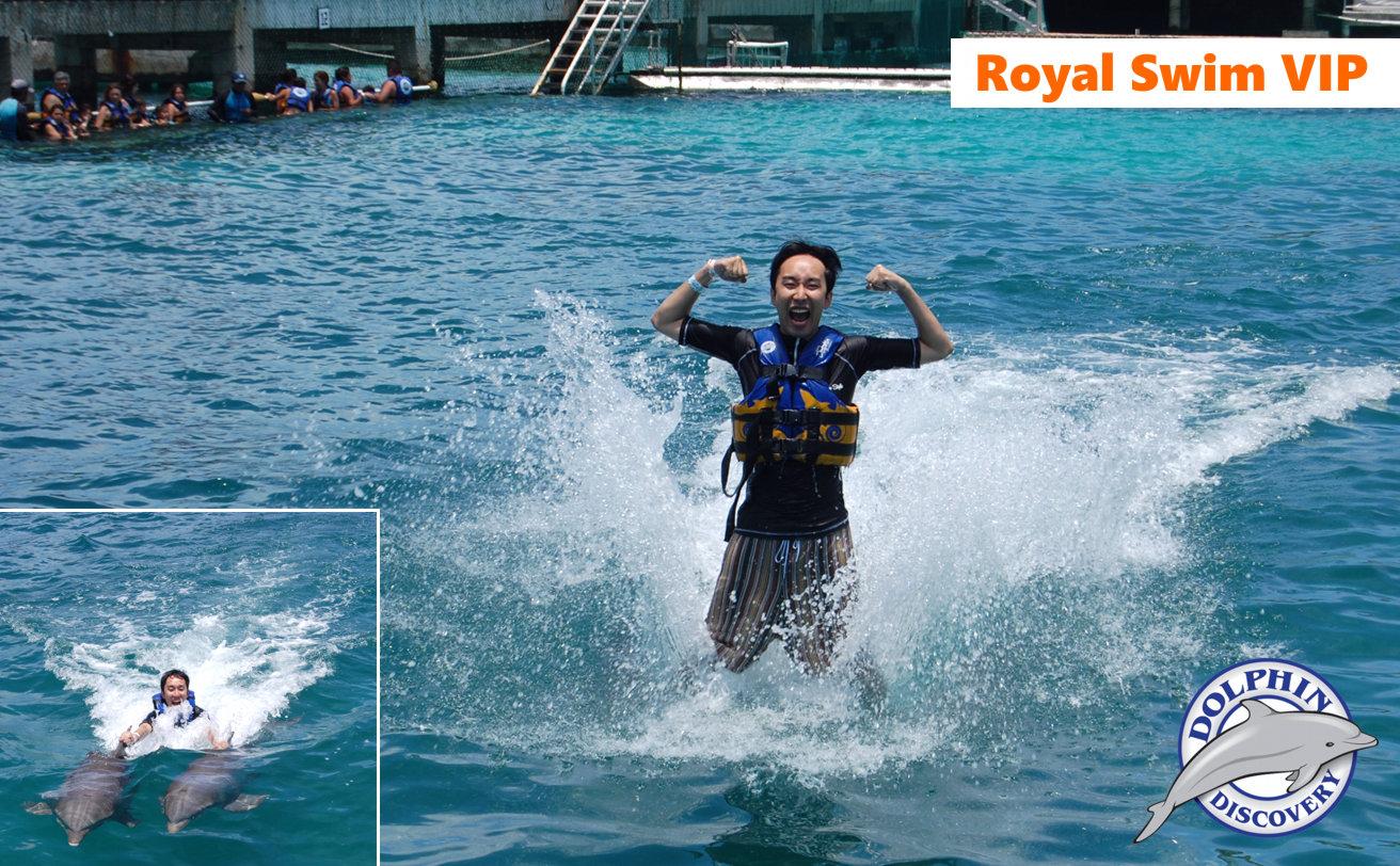 Delfines Royal Swim VIP desde Cancún