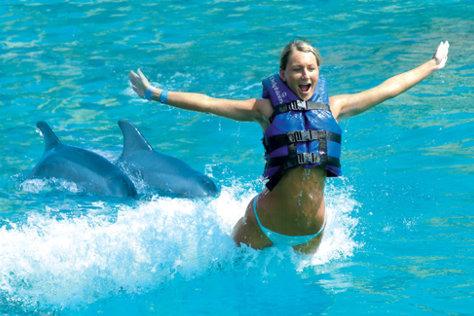 Delfines Precio Barato en Cancun