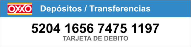 Pagar en efectivo Tour Xenses desde Cancún, donde nada es lo que parece !! | VC19